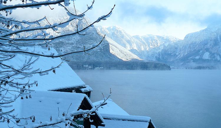 Ferienwohnung mit Charme, See im Nebel. (© Torsten Kraft)