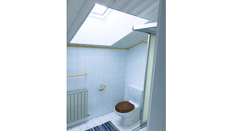 toilet, skylight