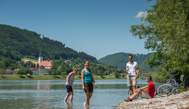 donauradweg-in-ober-sterreich (© Donau OÖ)
