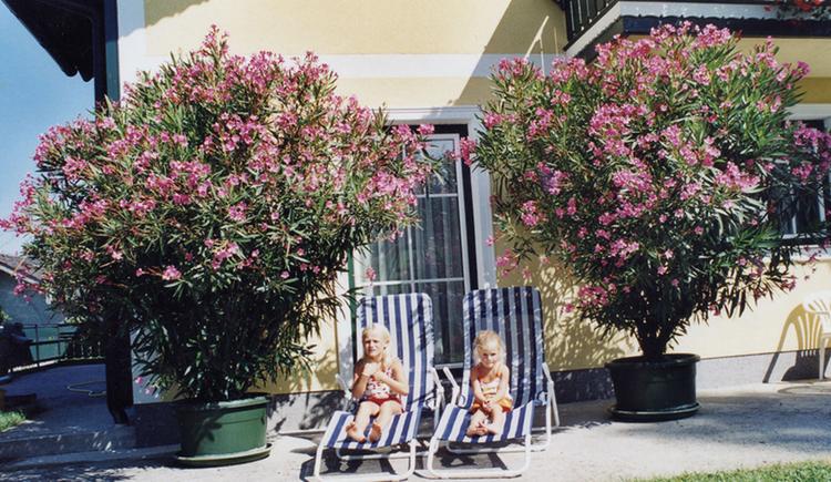 Kinder liegen in Liegestühlen, daneben riesige Oleander. (© Maier)
