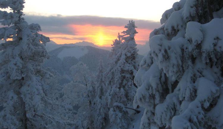 Winterbild Fuschl (© Wesenauerhof)