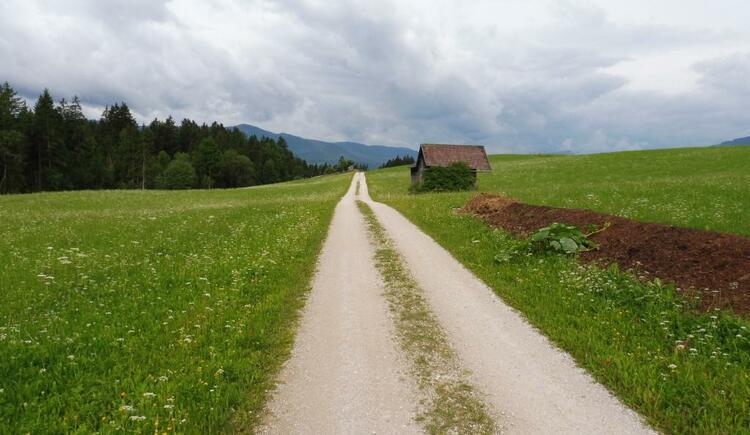 zurück über herrliche Schotterwege... (© Tourismusverband Ausseerland-Salzkammergut)