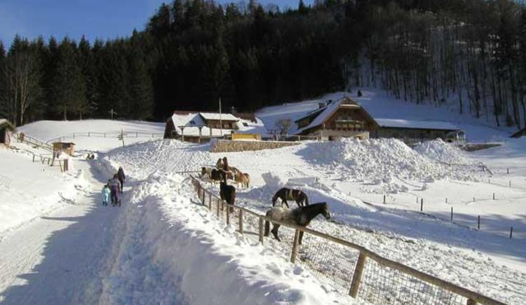 Almgasthof Hochsteinalm Winter (© Bettina Ellmauer)