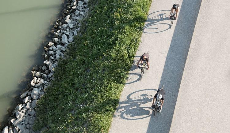 Radfahren am Donauradweg bei Aschach. (© Oberösterreich Tourismus GmbH/Robert Maybach)