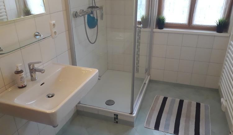 Badezimmer mit Dusche und Waschbecken.