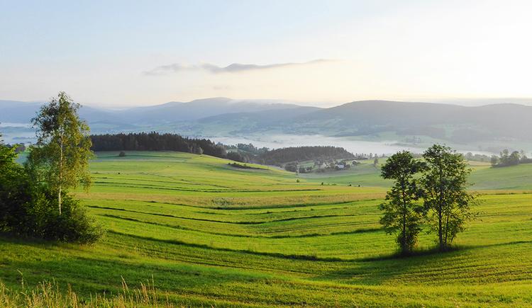 Sanfte Hügellandschaft. (© Fotograf Lasinger)