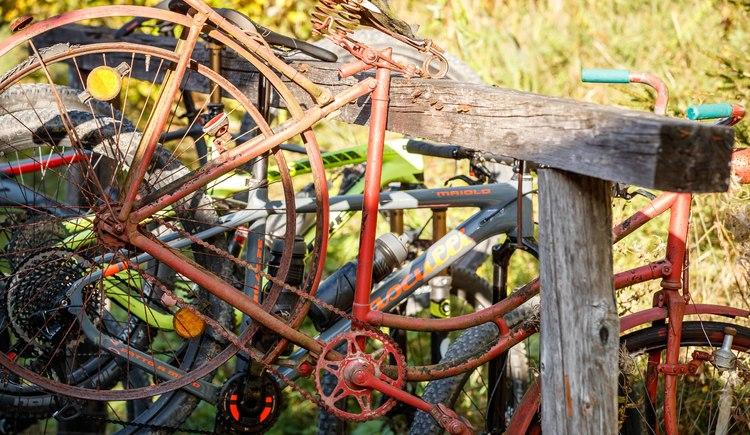 So mancher Mountainbiker blieb aufgrund der Köstlichkeiten bei Rathluckenhütten hängen! (© Erwin Haiden bikeboard.at)