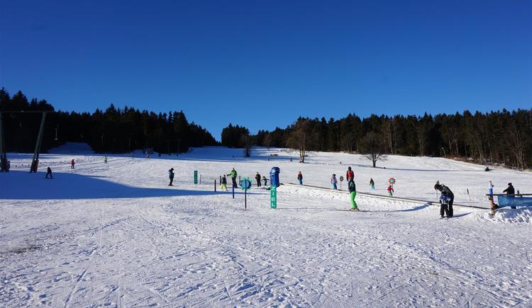 Skifahren und Rodeln am Viehberg (© Viehberglifte)