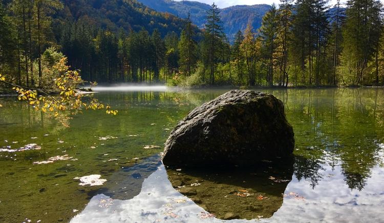 Langsam beginnt der Herbst die Blätter umzufärben. Im Hintergrund mystische Stimmung durch den Nebel über dem See. (© Manuela Elmer)