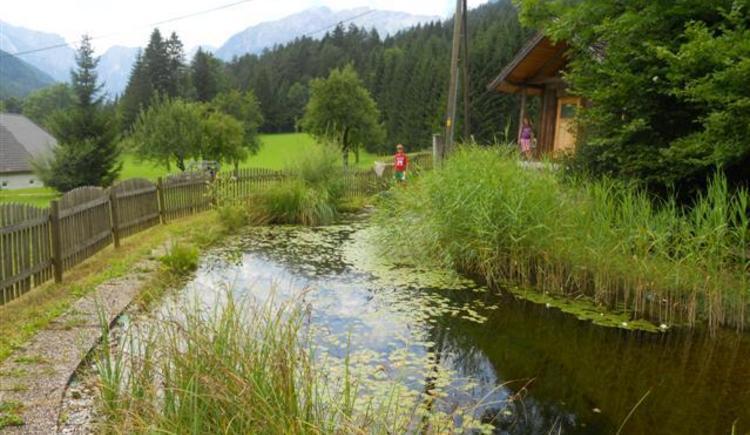 Unser kleiner Teich (© Huem)