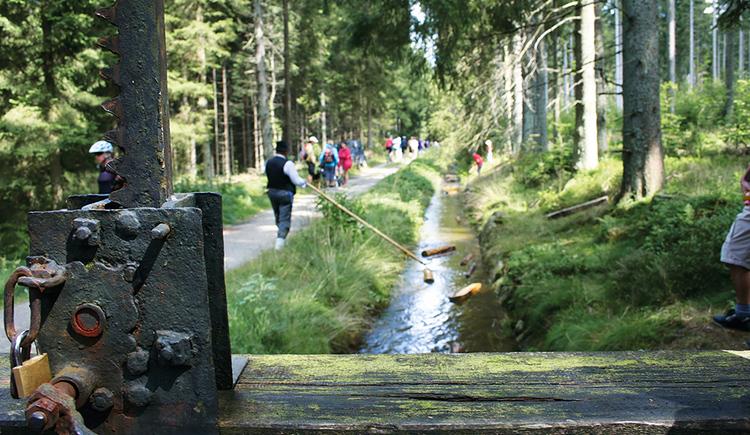 Der Schwarzenbergische Schwemmkanal - ein heimliches Weltwunder. (© Ferienregion Böhmerwald)