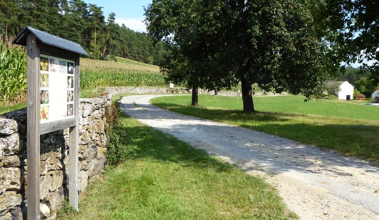 Trockensteinmauer mit Lehrpfad (© Tanja Mittermair)