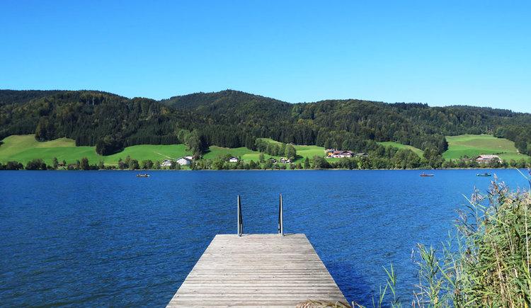 Steg mit Leiter in den Irrsee, auf der anderen Uferseite sind Hügel und Wälder. (© www.mondsee.at)