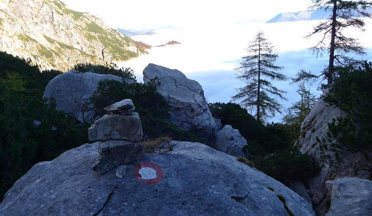Steinmanderl über den Wolken (© Mittermayr)