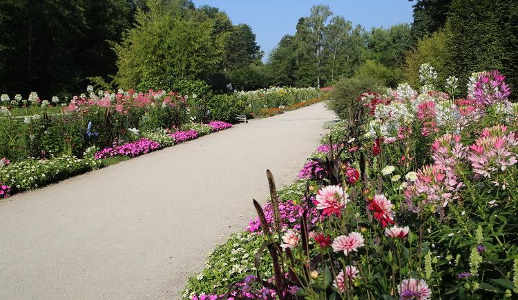 Botanica Park (© Tourismusverband Urlaubsregion Vitalwelt Bad Schallerbach / Andreas Maringer)