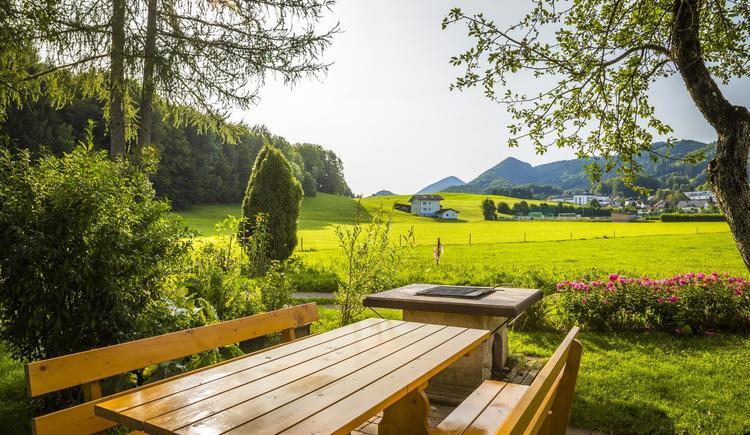 Sommer-Garten-Grillplatz