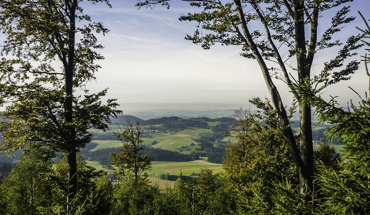 Ausblick vom Wendenstein. (© Mayr Manfred)