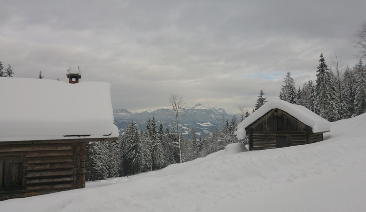 Herrliche Winterlandschaft auf der Trockentannalm in Bad Goisern am Hallstättersee. (© Ch. Unterberger)