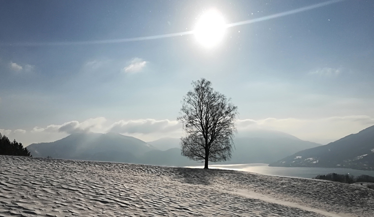 Winter landscape. (© Naturpark Attersee-Traunsee/Sabine Pumberger)