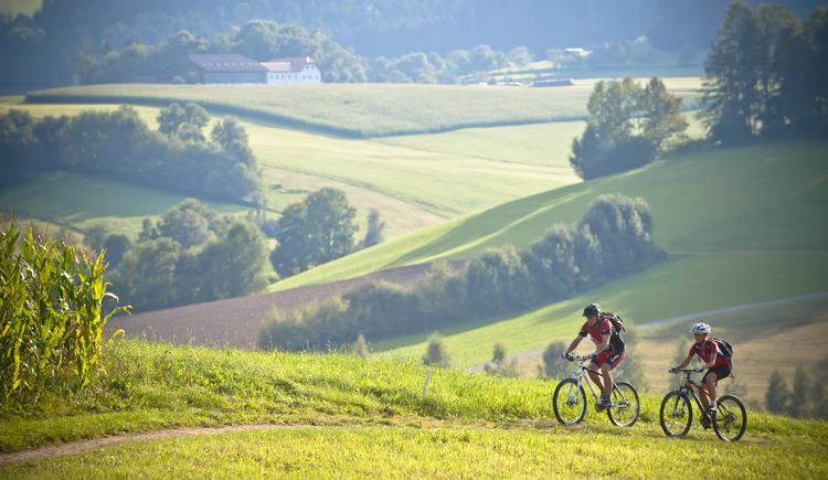 Mountainbiken%2bim%2bM%c3%bchlviertel-6 (© OÖ Tourismus)