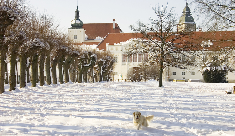 Schlosspark in der 1. Cittàslow Österreichs. (© TSE GmbH)