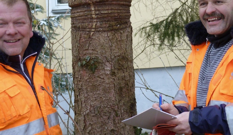 Dirneder und Pointner bei der Baumkontrolle
