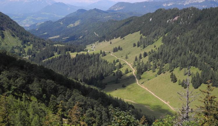 Dörflmoaralm (© Nationalpark Kalkalpen/Stückler)