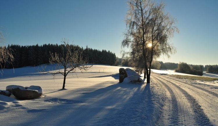 frischer Schnee 2012