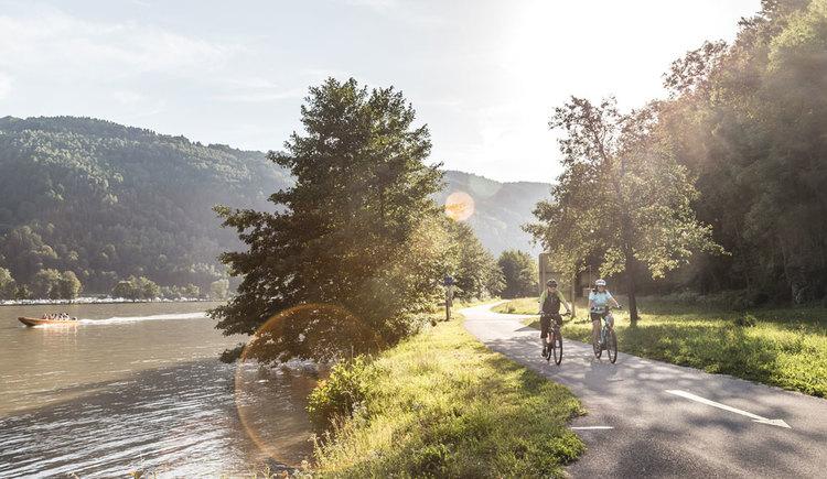 Am Donauradweg in der Schlögener Schlinge. (© Oberösterreich Tourismus GmbH/Moritz Ablinger)