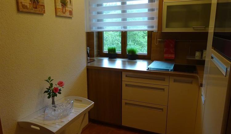 Küche mit Geschirrspüler, Backofen, Ceranfeld, div