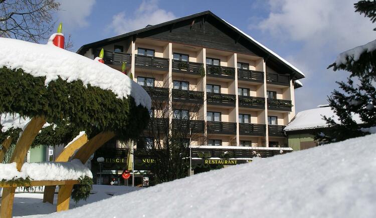 Hotel im Winter (© TVBöhmerwald)