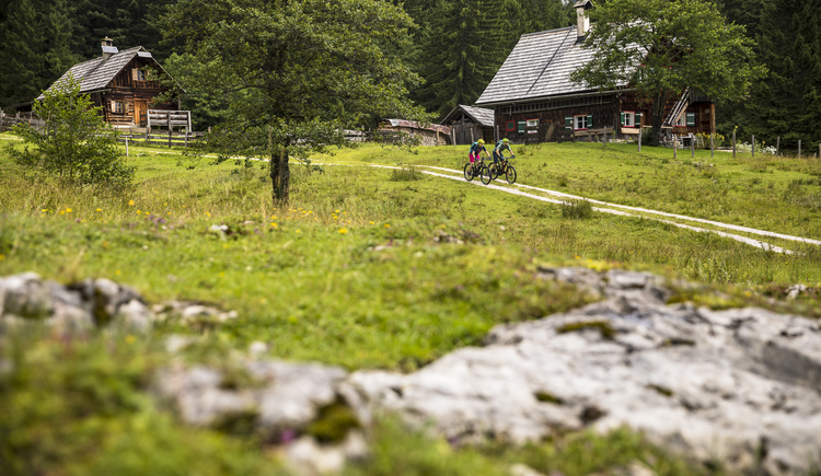 By e-bike through the alpine areas in the Salzkammergut