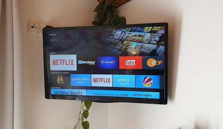 FeWo - SmartTV mit Netflix (© Landhaus Osborne)