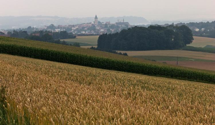 Blick auf Enns (© WGD Donau Oberösterreich Tourismus GmbH/Kranzmayr)