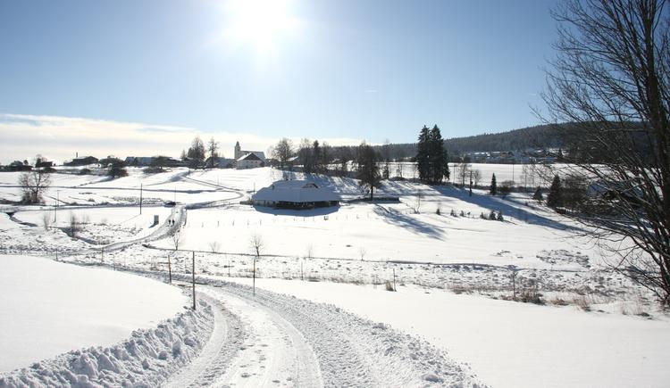 Sandl im Winter (© Judith Hießl - Gemeinde Sandl)