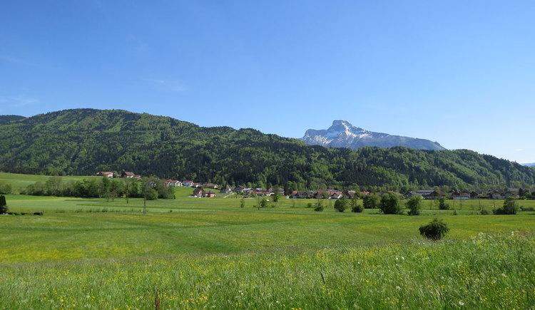 im Vordergrund ist eine Wiese zu sehen, im Hintergrund ein schneebedeckter Berg. (© mondsee.at)