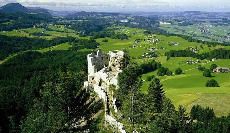 Blick auf die Ruine Wartenfels, umgeben von Wäldern, im Hintergrund sind noch einige Berge zu sehen. (© www.mondsee.at)