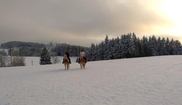 Winterlandschaft und Reiter (© Familie Schmalzer)