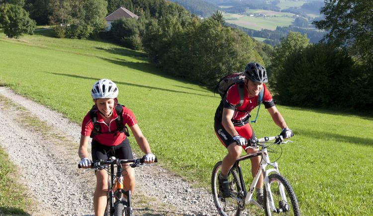 Mountainbiken%2bim%2bM%c3%bchlviertel-5 (© OÖ Tourismus)