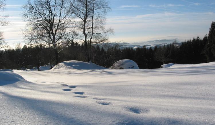 Winterliche Naturparklandschaft. (© Naturpark Mühlviertel)