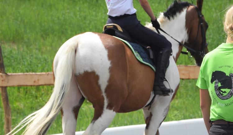 Pferde- und Reiterschule (© privat)