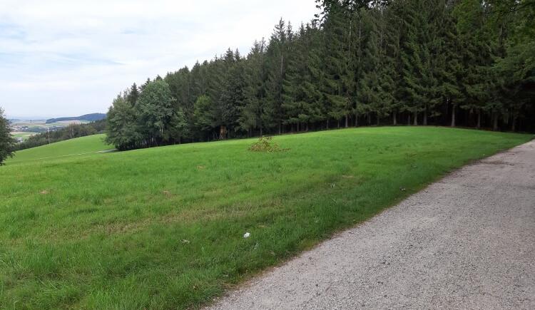 BWA Pramet_Hartjesweg_(c)Innviertel Tourismus-Zotscher (18) (750x563) (© Innviertel Tourismus-Zotscher)