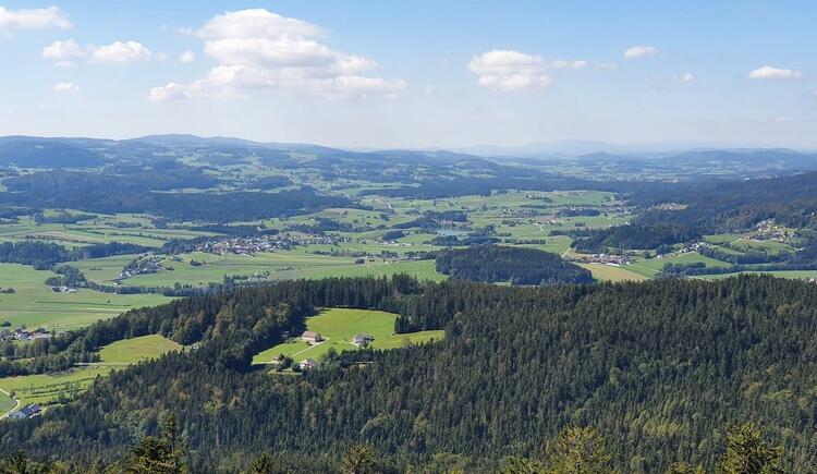 Traumhafter Weitblick bis Bayern (© Maria Felhofer| Ferienregion Böhmerwald)
