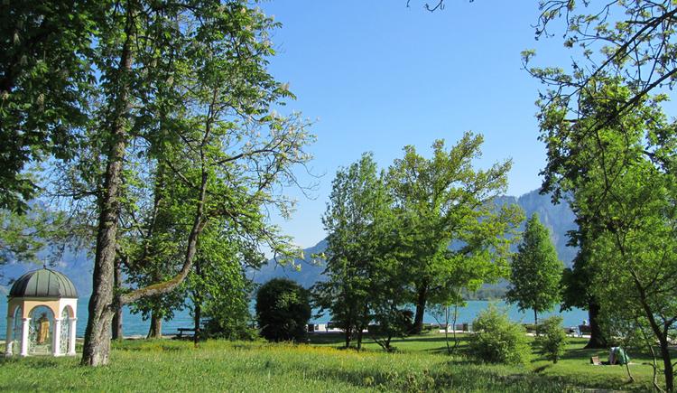 Wiesen und Bäume, seitlich eine kleine Seekapelle. (© Tourismusverband MondSeeLand)