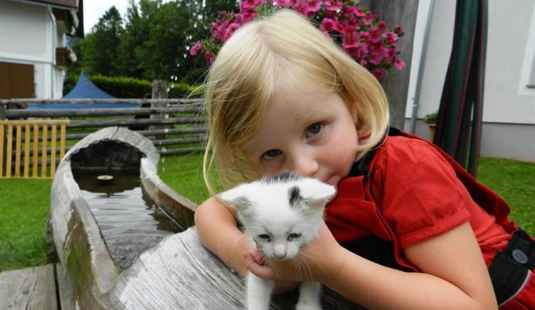 Hanna´s Lieblingskatze (© Baby- und Kinderbauernhof Riegler)