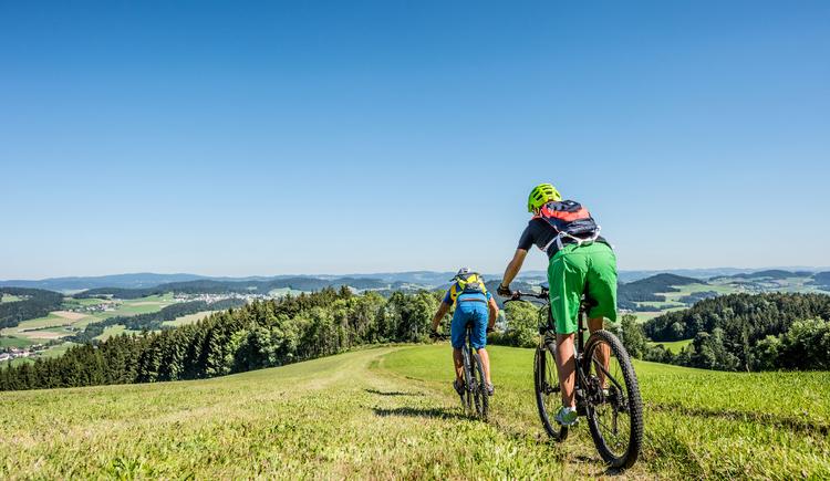 Mountainbiken (© Mühlviertler Marken GmbH)