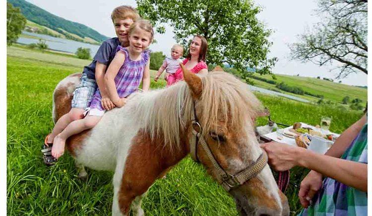 Kinder sitzen auf einem Pferd. (© Ederbauer)
