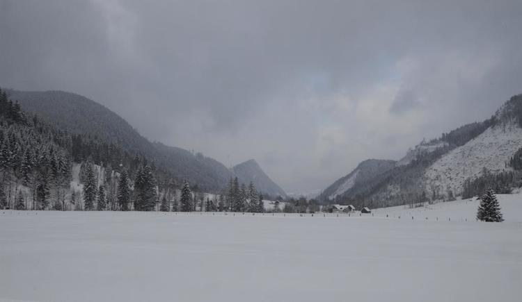 Winterblick ins Tal (© werner mair)