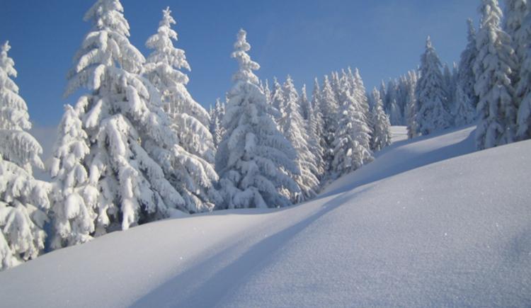 Winter Hintersee1.JPG