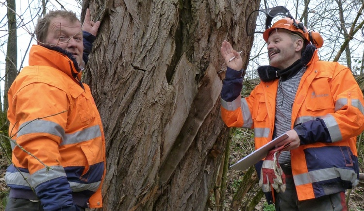 Die Baumkontrollore Karl Dirneder und Rudi Pointner